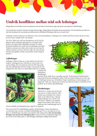 Undvik konflikter mellan träd och ledningar