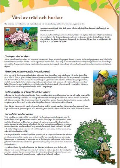 Vård av träd och buskar