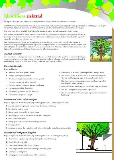 Identifiera riskträd
