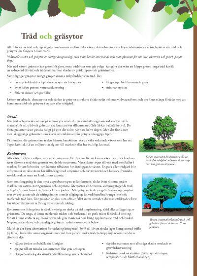Träd och gräsytor