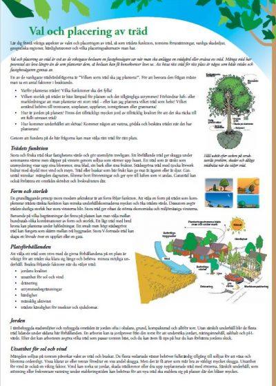 Val och placering av träd